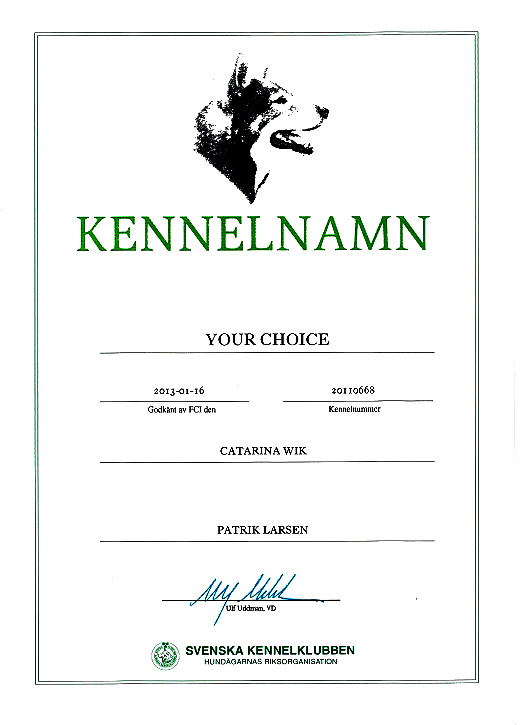 Your Choice Kennel